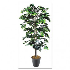 Artificial Ficus Tree With Planter, 6-Ft. Overall Height
